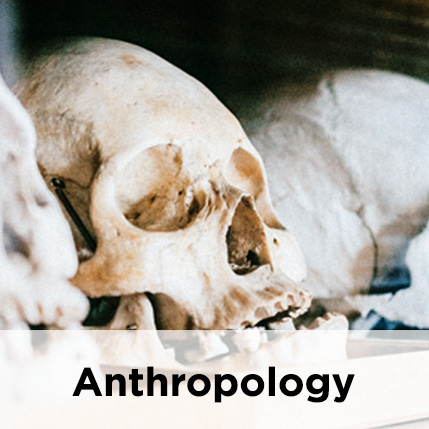 https://soloabadi.com/en/tag/anthropology/